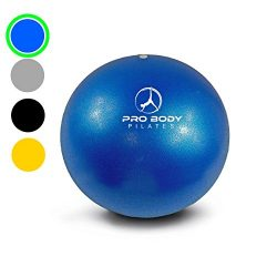 Mini Exercise Ball – 9 Inch Bender Ball for Stability, Barre, Pilates, Yoga, Core Training ...