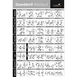 DUMBBELL EXERCISE POSTER LAMINATED – Workout Strength Training Chart – Build Muscle, ...