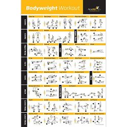 Bodyweight Exercise Poster – Total Body Workout – Personal Trainer Fitness Program & ...
