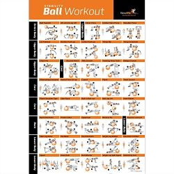 Exercise Ball Poster Laminated – Total Body Workout – Personal Trainer Fitness Progr ...