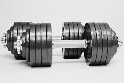 Omnie 105 LBS Adjustable Dumbbells with Gloss Finish and Secure Fit Collars for Crossfit WOD Wei ...