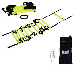 Cintz 15′ Fixed Rungs Speed Agility Ladder with carry bag and ground anchors