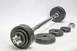 Omnie 65 LBS Adjustable Dumbbells with Gloss Finish and Secure Fit Collars for Crossfit WOD Weig ...