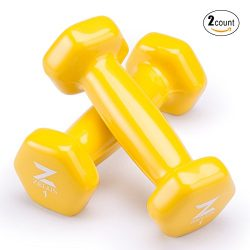 Z ZELUS Cast Iron Vinyl Coated Dumbbells Hand Weights for Women/Men Workout (Set of 2) (1)