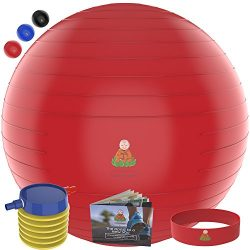 Exercise Ball Stability Fitness Balls | Best Professional Balance Anti-Burst Set – Yoga Large Th ...