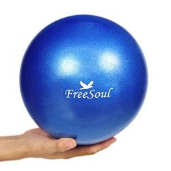 Small Pilates Ball with Pump 9 Inch Mini Bender Ball for Stability Pilates Yoga Barre Physical T ...