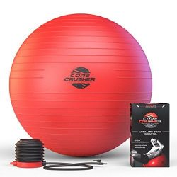 Master of Muscle Exercise Ball 65cm with Pump – Best for Stability – Yoga – Ab ...