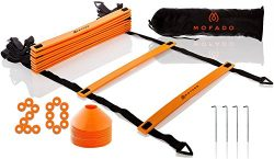 Premium Agility Ladder and Cones – 20 Field Cones – 12 Rung Speed Ladder – 19f ...