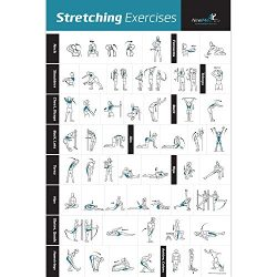 Stretching Exercise Poster Laminated – Shows How to Stretch Specific Muscles for Your Work ...