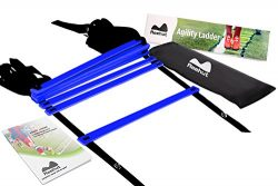 Reehut Agility Ladder w/ FREE USER E-BOOK + CARRY BAG – Speed Training Equipment (Blue, 8  ...