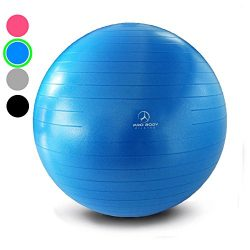 Exercise Ball – Professional Grade Anti-Burst Yoga Ball, Balance Ball for Pilates, Yoga, S ...