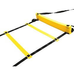 JUMPING Physport Speed Ladder Soccer Training Agility Ladder with Carry Case Sport Tool (20-Rung)