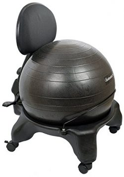 Isokinetics Inc. Adjustable Back Exercise Ball Office Chair – Standard Frame Height – ...