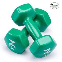 Z ZELUS Cast Iron Vinyl Coated Dumbbells Hand Weights for Women/Men Workout (Set of 2) (10)