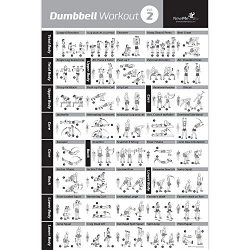 DUMBBELL EXERCISE POSTER VOL. 2 LAMINATED – Workout Strength Training Chart – Build  ...