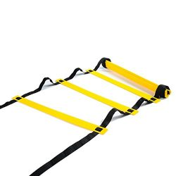 Physport Speed Ladder Soccer Training Agility Ladder with Carry Case Sport Tool (8-Rung)