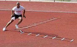 Gill Athletics Abc Training Agility Ladder – 30 Feet – Product Description – T ...