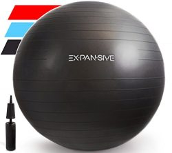Expansive Living Anti Burst Exercise Ball (Black, 55cm) -2,000lbs STATIC STRENGTH STABILITY, PRO ...
