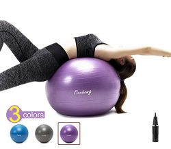 Finnhomy Exercise Ball (Multiple Colors) for Fitness, Stability, Gym, Balance & Yoga, Yoga B ...