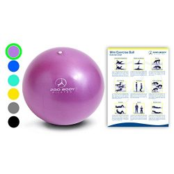 Mini Exercise Ball – 9 Inch Small Bender Ball for Stability, Barre, Pilates, Yoga, Core Tr ...