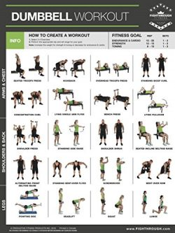 Dumbbell Exercises Laminated Poster Chart – Strength Training – Core – Chest & ...