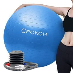 CPOKOH Exercise Ball,Anti Burst and Slip Resistant Yoga Ball,Swiss Ball,Fitness Ball,Ab Exercise ...