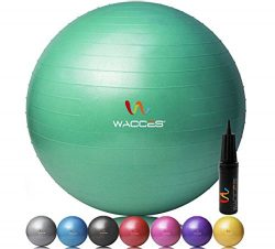 Wacces Professional Exercise, Stability and Yoga Ball for Fitness, Balance & Gym Workouts- A ...