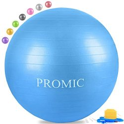 PROMIC Professional Grade Static Strength Exercise Stability Balance Ball with Foot Pump,65cm,Blue