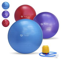 Body Shape Wellness Premium Exercise Gym Quality Ball with Pump-55cm/65cm/75cm well Tested up to ...