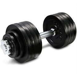 52.5 lbs Adjustable Cast Iron Dumbbell – ²DL2ZZ