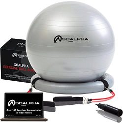SoAlpha Premium Exercise Ball with 15LB Resistance Bands, Stability Base, Pump, 65 CM Fitness Ba ...