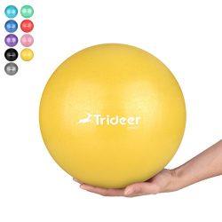 Trideer Pilates Ball, Barre Ball, Mini Exercise Ball, 9 Inch Small Bender Ball, Pilates, Yoga, C ...