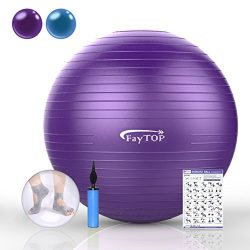 FayTOP 65cm Exercise Ball EXTRA THICK Frosted Surface 2200lb Capacity -Stability Ball, Yoga Ball ...