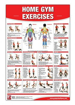 Home Gym Exercises Laminated Poster/Chart: Home Gym Chart, Home Gym Weight Lifting Routine, Weig ...