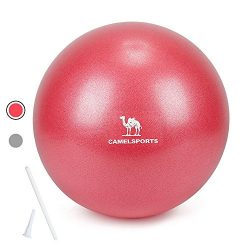 Camel Small Exercise Ball Mini Ball for Pilates Yoga Stability Barre Core Training & Physica ...