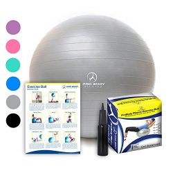 Exercise Ball – Professional Grade Anti-Burst Fitness, Balance Ball for Pilates, Yoga, Bir ...