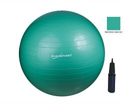 SUESPORT 1000lbs Static Strength Anti-Burst Exercise Ball Kit With Pump, Diameter 26″ (65c ...