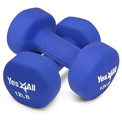 Yes4All 12 lbs Dumbbells Neoprene with Non Slip Grip – Great for Total Body Workout – Total Weig ...