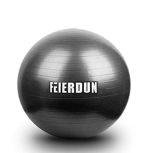 FEIERDUN Stability Exercise Ball, Yoga Ball Anti-Burst/Heavy Duty Ball Chair for Office & Ho ...