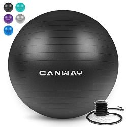 Canway Exercise Ball – Extra Thick & Slip Resistant Workout Ball, Professional Grade 2 ...
