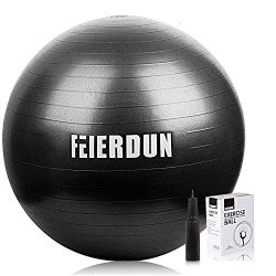 FEIERDUN Stability Exercise Ball, Yoga Ball Anti-Burst/Heavy Duty Ball Chair for Office & Ho ...