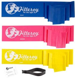 Therapy Resistance Exercise Stretch Bands with Door Anchor & Instruction Sheet. Use for Stre ...