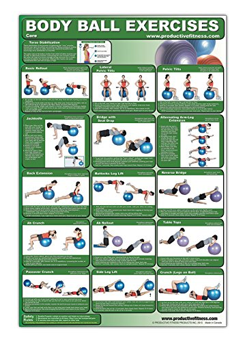 Laminated Body Ball Core Exercise Poster – This Exercise Ball Chart was Created by Fitness ...