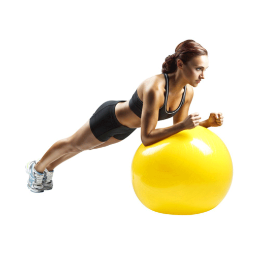 Exercise Ball Workout PRO