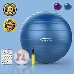 Exercise Ball for Yoga, Fitness, Workout, Balance, Pilates, Birthing, Therapy Balls – Non  ...