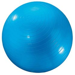 Dick Martin Sports Exercise Ball, 24″, Blue