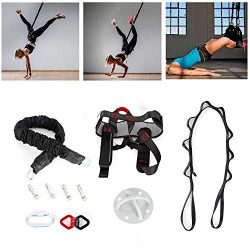 Yoga Rope Bungee Resistance Band, 3.93 FT 100KG Gravity Aerial Yoga Bungee Resistance Bands Danc ...