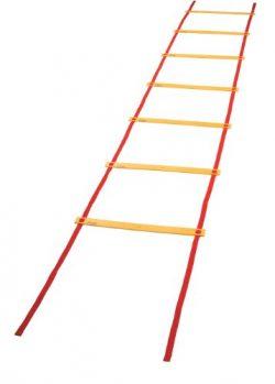 Champion Sports Economy Agility Ladder