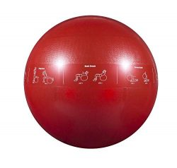 GoFit Professional Grade Stability Ball – Home Workout Supplies