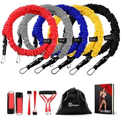 Polygon Resistance Bands Set, Upgraded Resistance Tubes with Anti-Snap Heavy Duty Protective Nyl ...